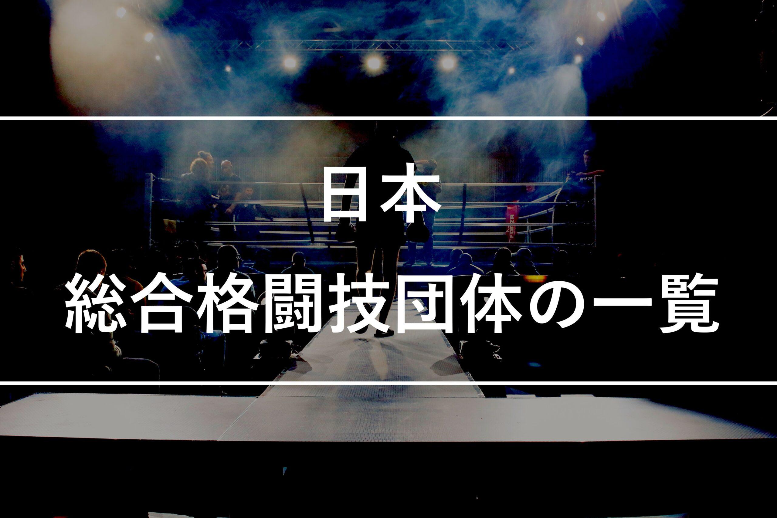 【日本】総合格闘技団体の一覧、仕組みを解説します